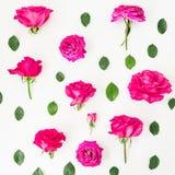 Modèle floral fait de roses et feuilles roses sur le fond blanc Configuration plate, vue supérieure Composition d'été Photo stock