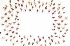 Modèle floral fait de roses roses et beiges sur le fond blanc Configuration plate, vue supérieure Texture de modèle de fleurs Images stock