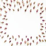 Modèle floral fait de roses roses et beiges sur le fond blanc Configuration plate, vue supérieure Texture de modèle de fleurs Photo stock