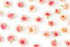 Modèle floral fait de roses roses sur le fond blanc Photo libre de droits