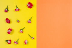 Modèle floral fait de roses sur le fond jaune et orange Configuration plate, vue supérieure Photographie stock
