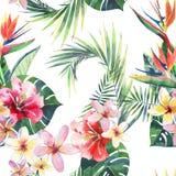 Modèle floral merveilleux tropical de fines herbes vert clair d'été d'Hawaï de palmettes tropicales et fleur bleue violette rouge illustration stock