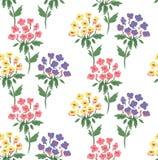 Modèle floral mignon d'hortensia Images libres de droits