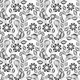 Modèle floral monochrome sans couture de vecteur Photos stock