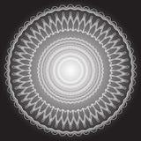 Modèle floral noir et blanc d'isolement de vecteur Fleurs calligraphiques, remous, lignes, courbes et ornement de cru épanouissez photos stock