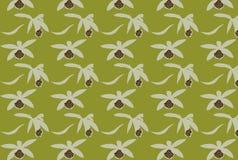 Modèle floral pour la conception et le papier peint Illustration Stock
