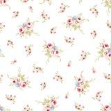 Modèle floral sans couture avec de petites roses rouges Photographie stock