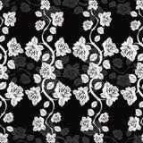 Modèle floral sans couture avec des branches de roses Roses blanches sur un fond noir Illustration de Vecteur