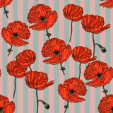 Modèle floral sans couture avec des fleurs de pavot Photo stock