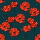 Modèle floral sans couture avec des fleurs de pavot Photo libre de droits