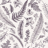 Modèle floral sans couture avec des herbes et des feuilles Photos libres de droits
