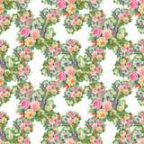 Modèle floral sans couture avec des roses rouges et oranges Image stock