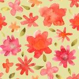 Modèle floral sans couture avec la fleur tirée par la main colorée d'isolement Photographie stock