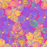 Modèle floral sans couture coloré de vecteur Photo stock