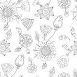 Modèle floral sans couture noir et blanc, coloration de page pour des adultes Image stock