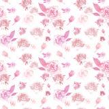Modèle floral sensible d'aquarelle avec les roses roses sur le fond blanc Belle copie botanique illustration stock