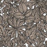 Modèle floral, vintage Feuilles décoratives, concept de nature Vecteur sans joint de fond illustration de vecteur