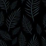 Modèle foncé d'Hawaï de jungle Vecteur floral exotique illustration stock