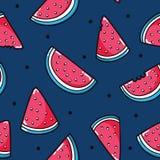 Modèle frais de pastèque Image stock