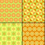 modèle frais vert orange de 4 styles Image libre de droits