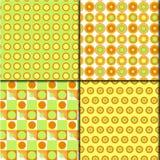 modèle frais vert orange de 4 styles Photographie stock