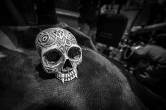Modèle humain de crâne sur la peau de vache Image stock