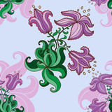 Modèle lilas Photo libre de droits