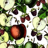 Modèle lumineux avec les framboises et les pommes juteuses Photo stock