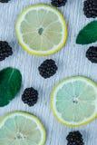 Modèle lumineux coloré des feuilles, des mûres et du citron Image stock