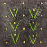 Modèle lumineux coloré fait de fleurs et épillets Photos stock