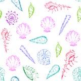 Modèle lumineux et coloré d'été avec des coquillages image libre de droits