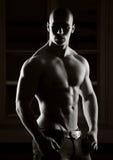 Modèle mâle Photo stock