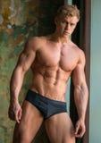 Modèle mâle Image stock