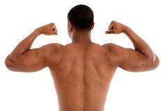 Modèle mâle noir sans chemise sur le fond blanc images libres de droits