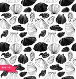 Modèle marin sans couture avec des coquilles Texture graphique noire et blanche avec des coquillages Photographie stock libre de droits