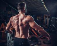 Modèle masculin musculeux montrant le sien arrière image libre de droits