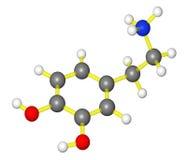Modèle moléculaire de dopamine Images libres de droits