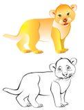 Modèle noir et blanc coloré de petit lion Photographie stock libre de droits