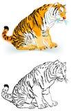 Modèle noir et blanc coloré de tigre Photographie stock libre de droits