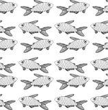 Modèle noir rayé de poissons sur le fond blanc illustration de vecteur