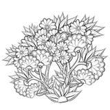 Modèle pour livre de coloriage avec les fleurs abstraites Image libre de droits