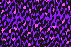 Modèle pourpre et rose de fourrure de léopard Image stock