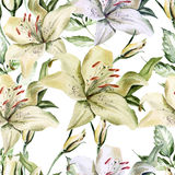 Modèle romantique avec des lis et des roses de fleurs Photographie stock libre de droits