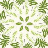 Modèle rond avec des feuilles Photos stock