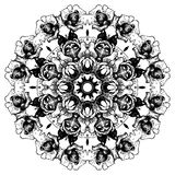 Modèle rond de dentelle décorative de vintage floral Images libres de droits