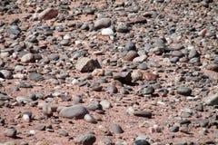 Modèle rond de pierres de petite plage images libres de droits