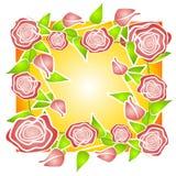 Modèle rose de fond de roses photographie stock libre de droits