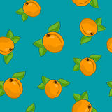 Modèle sans couture, abricot sur Azure Background Image stock