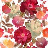 Modèle sans couture abstrait avec les fleurs tirées par la main sur le wh Image libre de droits