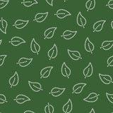 Modèle sans couture adoré de feuilles simples dans vert et blanc, vecteur Image libre de droits